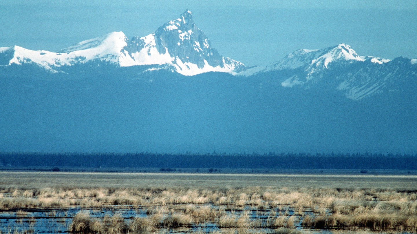 Lower Klamath NWR marsh and mountains | © Dave Menke/National Digital Library of the United States Fish and Wildlife Service