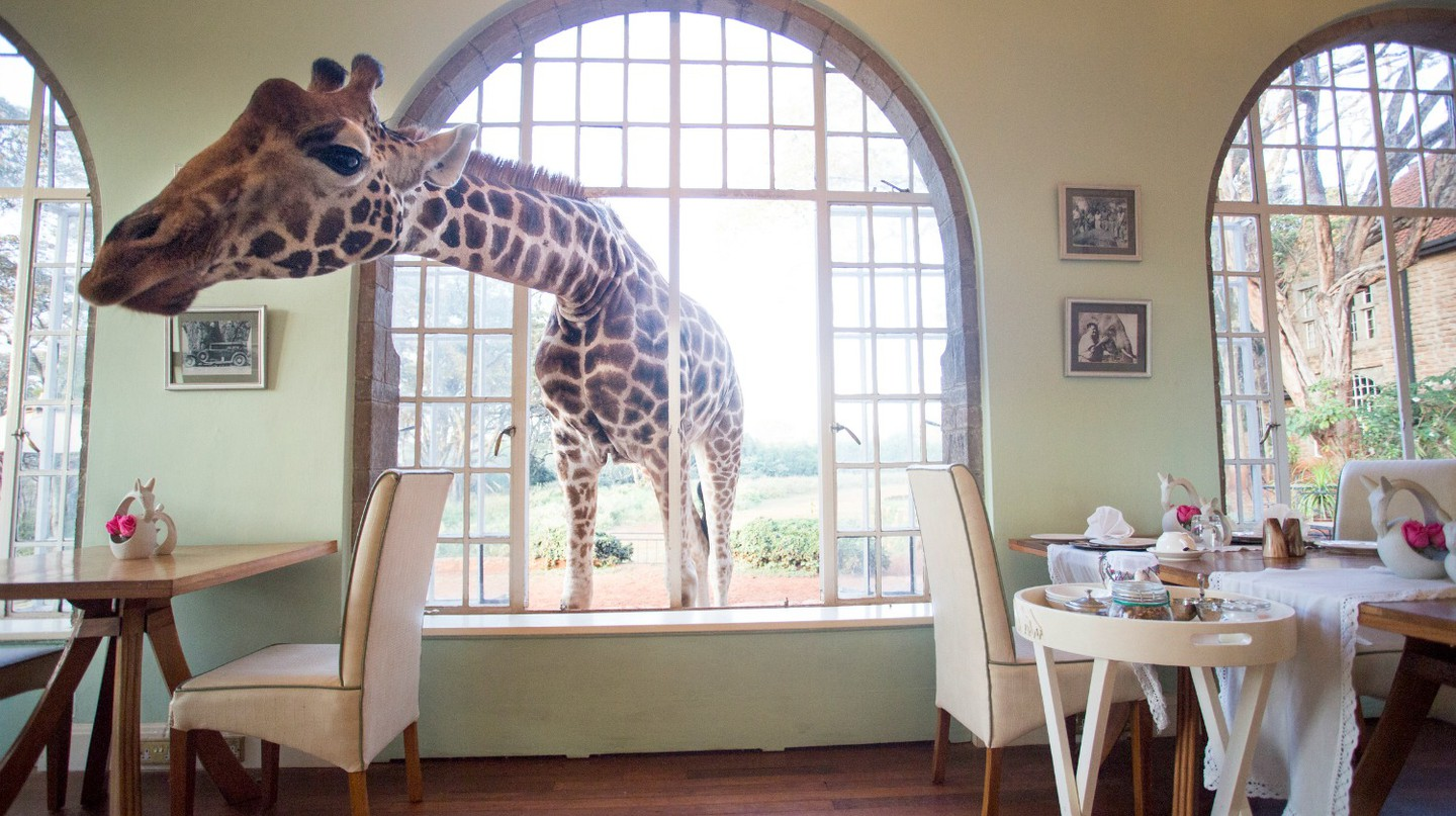 Giraffe Manor, Kenya | Courtesy The Safari Collection