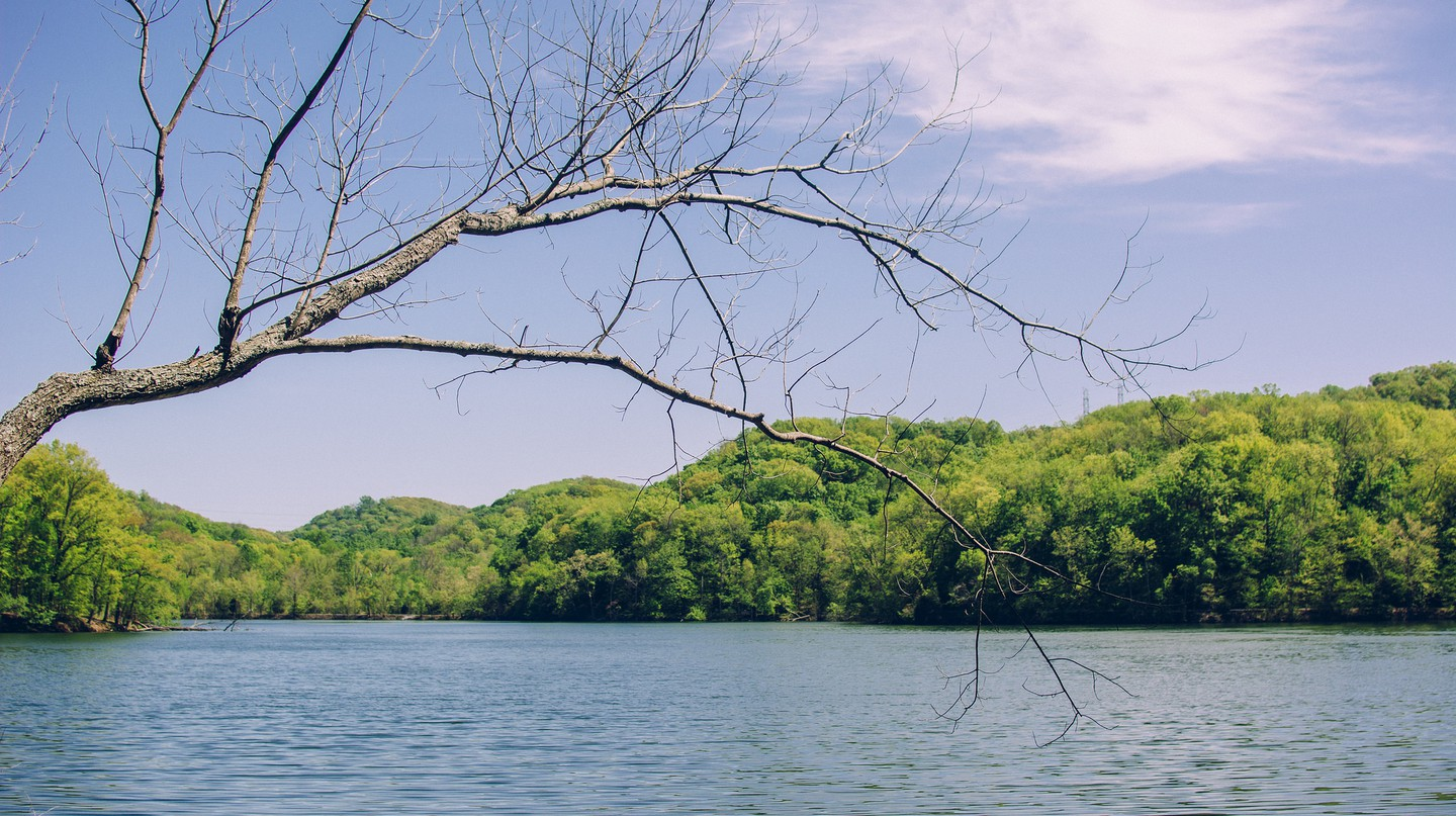 © Radnor Lake. Nashville, TN. 4.14, Mark B./Flickr