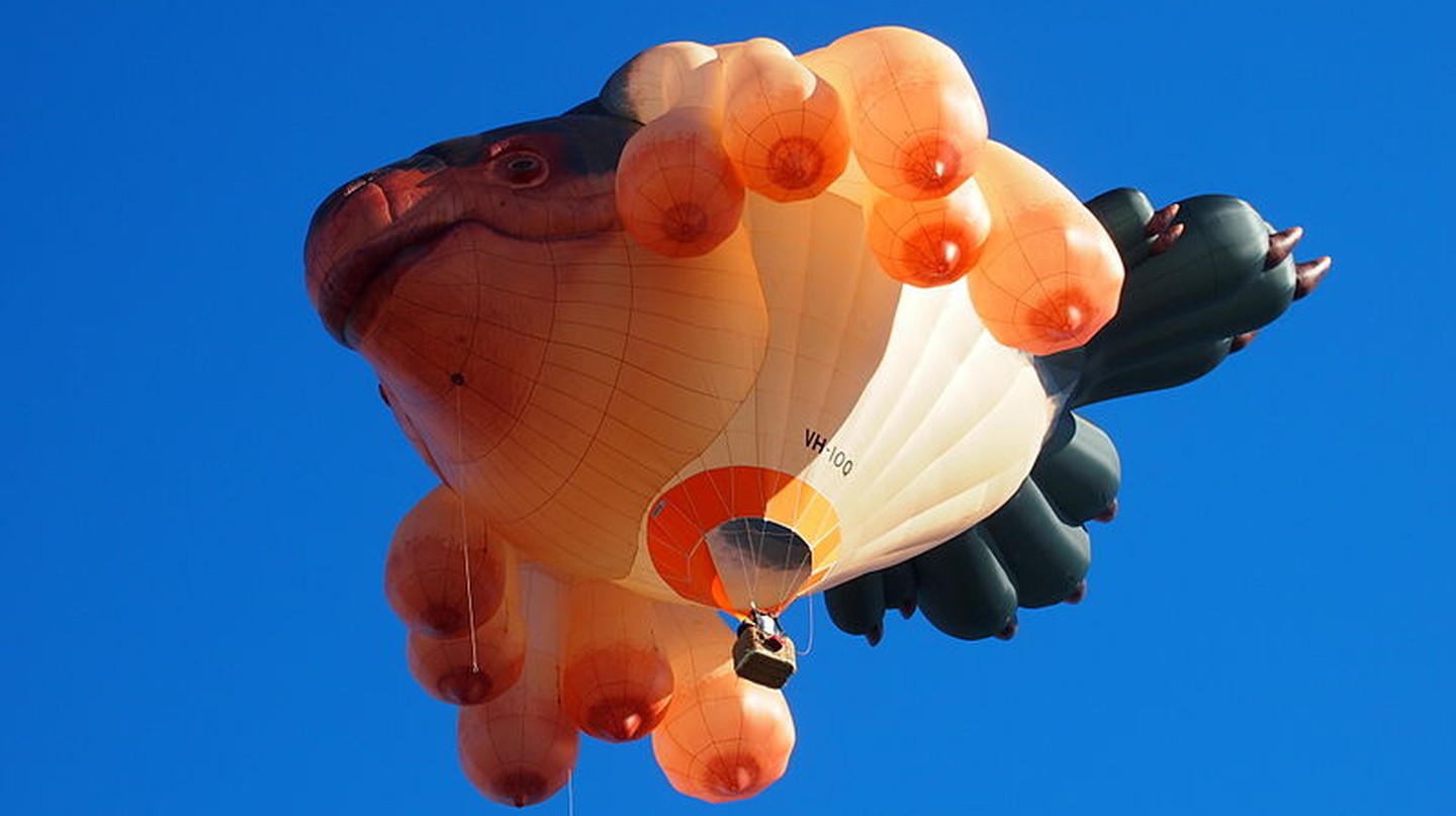 Meet Patricia Piccinini, The Artist Behind Australia's Skywhale And Meet Graham Project