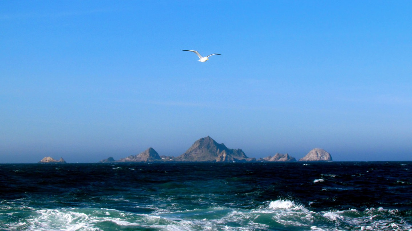 Farallon Islands © Jeff Gunn/Flickr