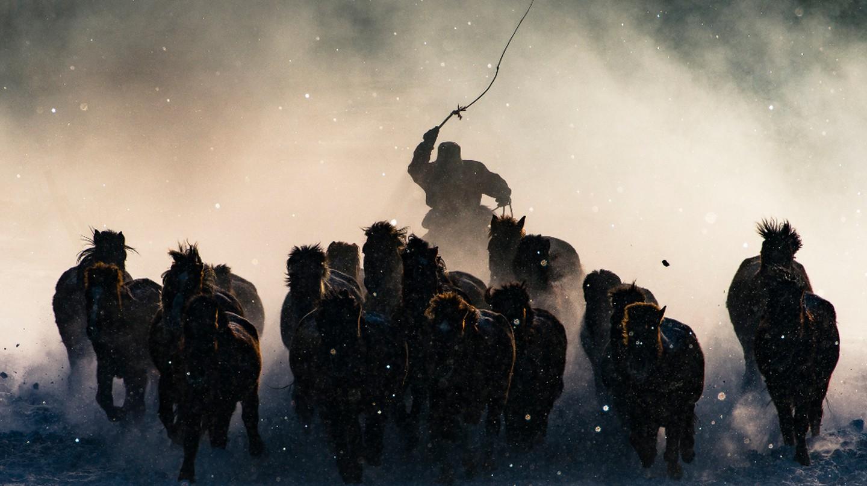 Winter Horseman, Inner Mongolia | © Anthony Lau