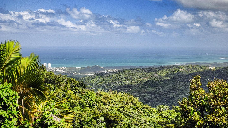 Puerto Rico   © Trish Hartmann/Flickr