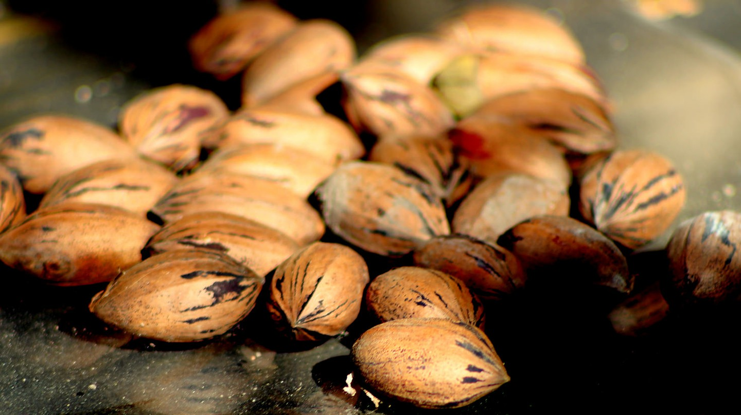 Pecans © rudresh_calls/Flickr