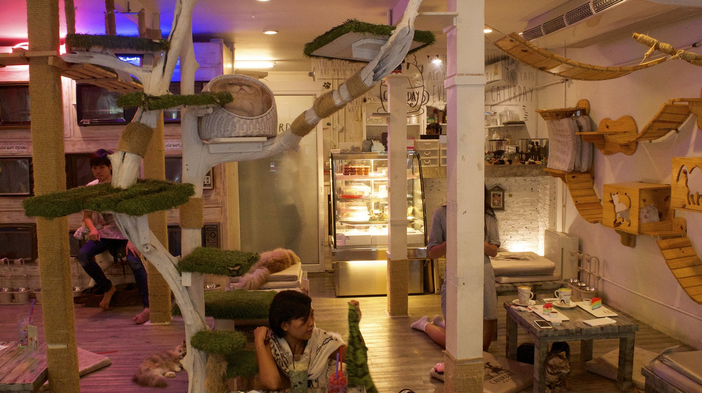 Bangkok's Quirky Themed Restaurants You Have To Try