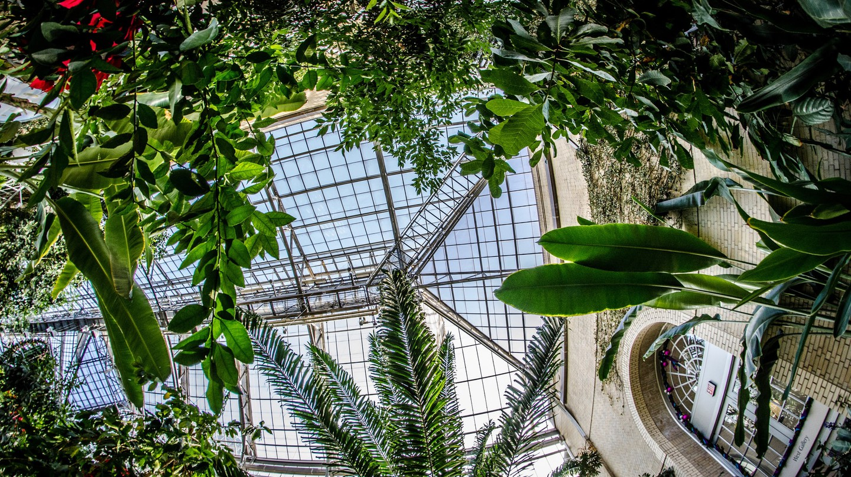 National Botanic Garden | © m01229/Flickr