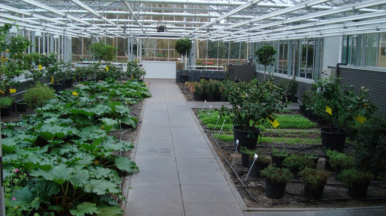 De Kas' greenhouses | © Miriam Lueck Avery/Flickr