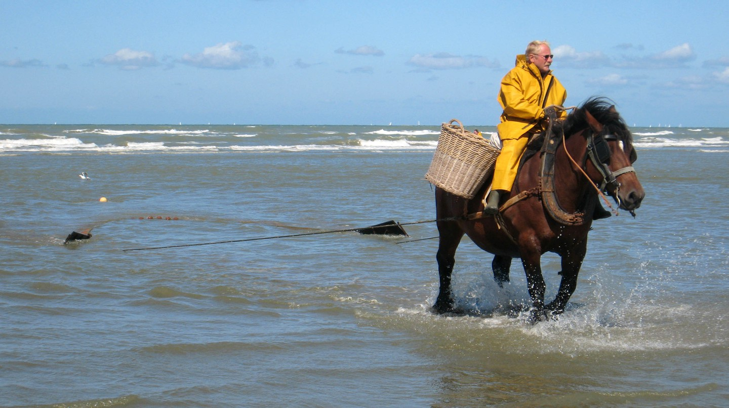 Shrimp fisherman on horseback | © David Edgar/WikiCommons