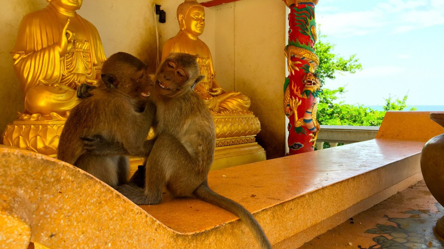 17 Thailand Travel Tips That Might Save Your Life