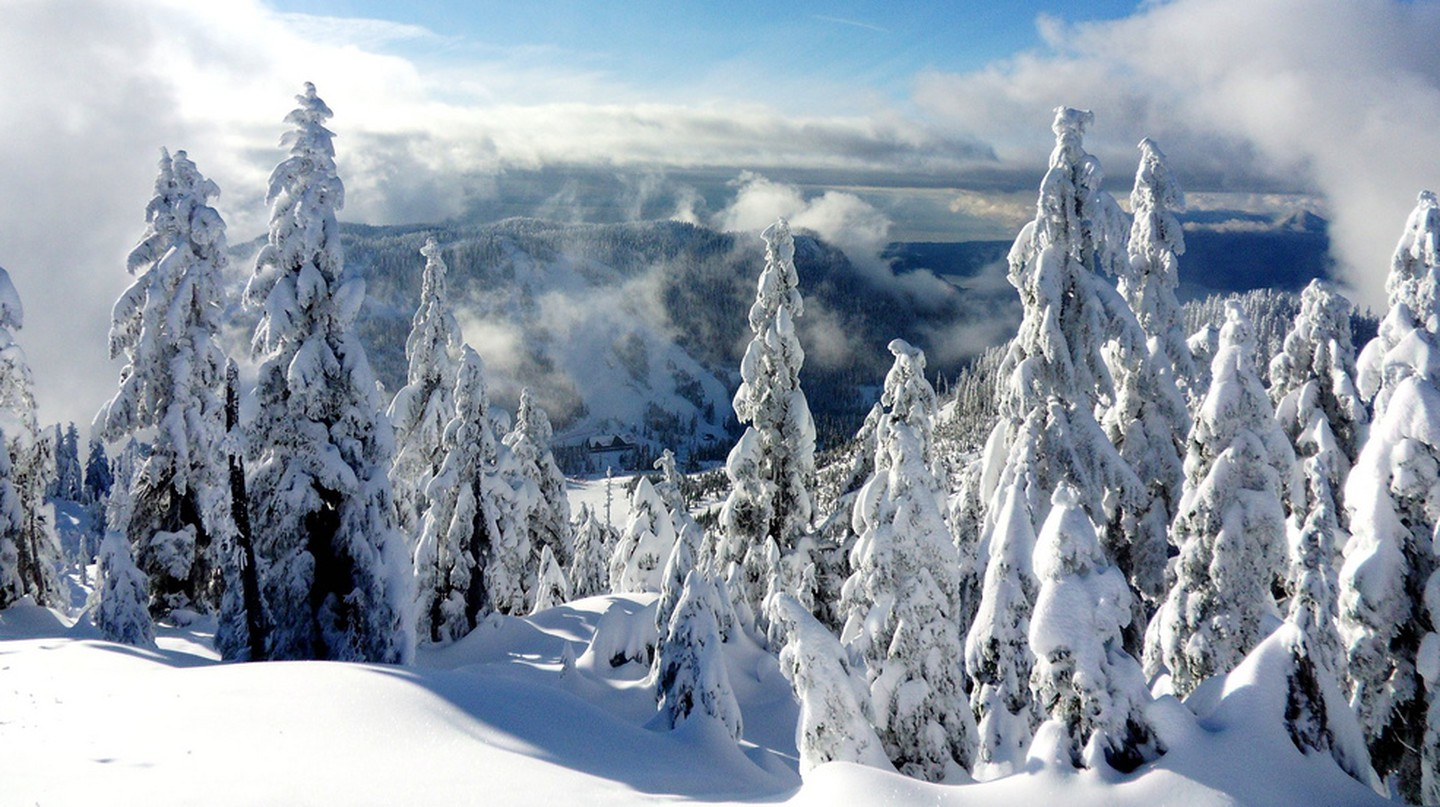 Breathtaking views at Cypress Mountain ©  Jennifer C. / Flickr