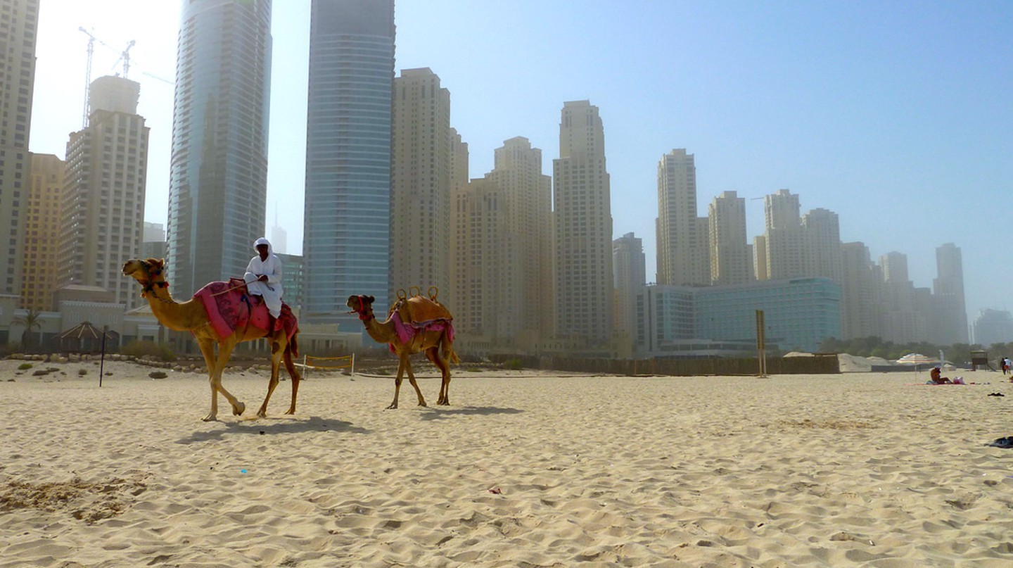 Riding camels on the JBR Beach | Mike Hauser / Flickr http://bit.ly/2km4vH0