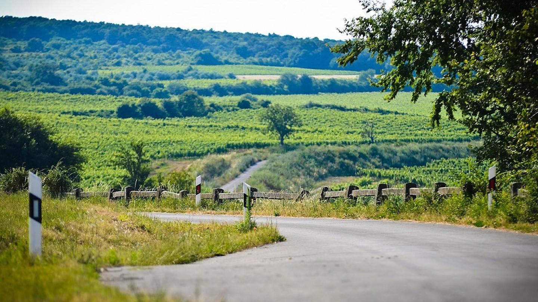 Hungary | © gazsovicskrisztian / Pixabay