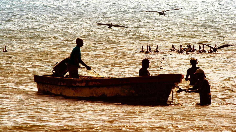 Local fishermen at work   © Verino77 / Flickr