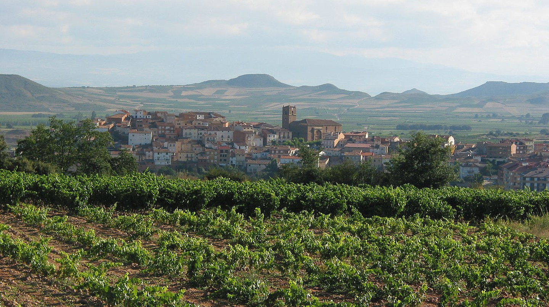 La Rioja wine region, Spain | © Gurrea / Wikimedia Commons