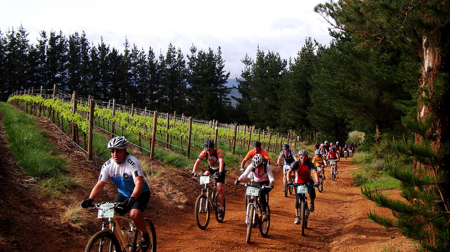 Cyclists biking through a vineyard in Somerset West, Cape Town | © Warren Rohner / Flickr
