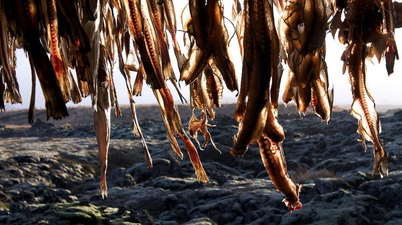 Dried fish | © Matito / Flickr