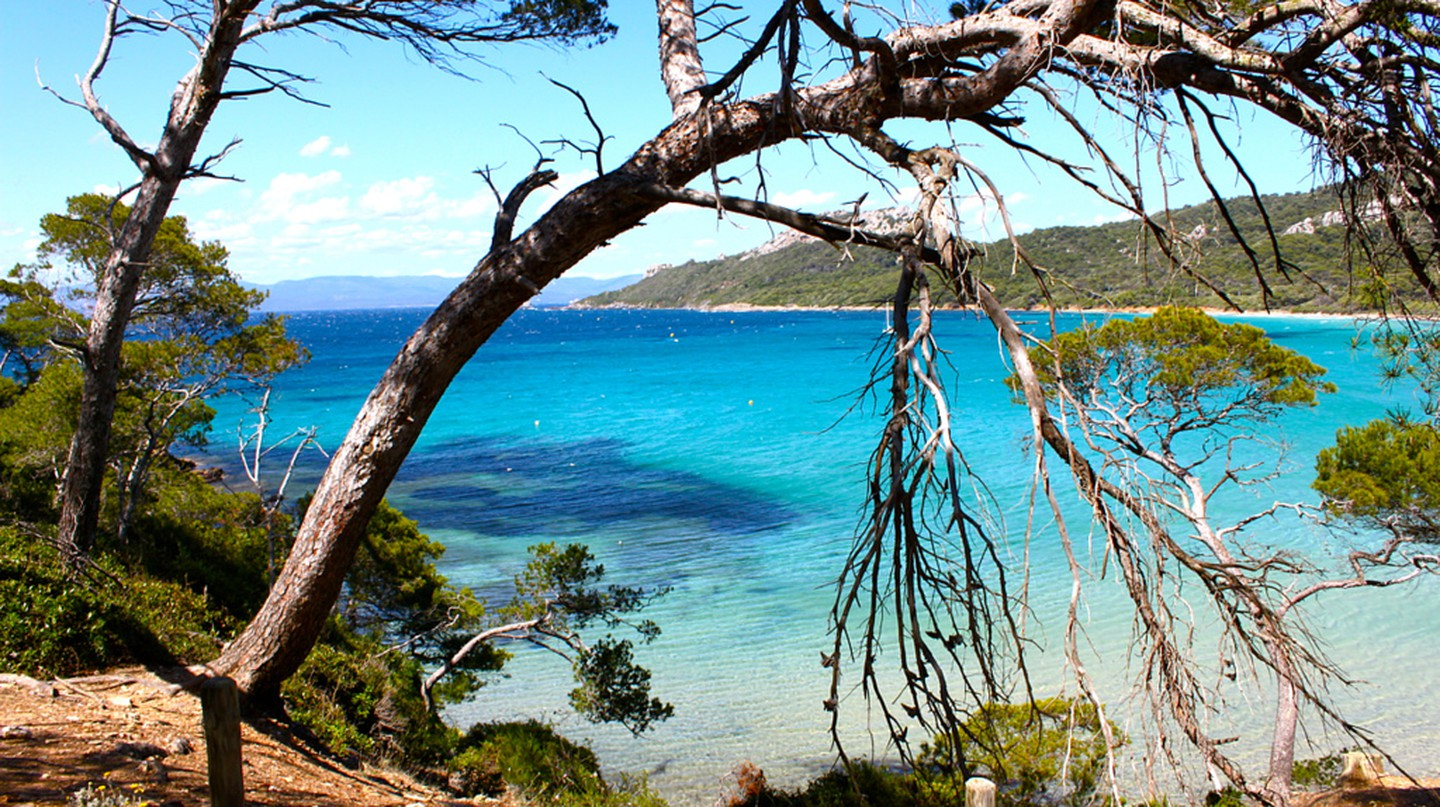 "Take a trip to the beautiful island of Porquerolles, ""Notre Dame"" 