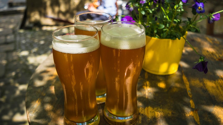 Beer drinking in summer | © Tama66 / Pixabay