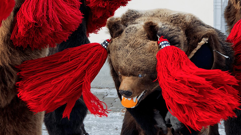 Romania's Dancing Bears | © Alex Dima