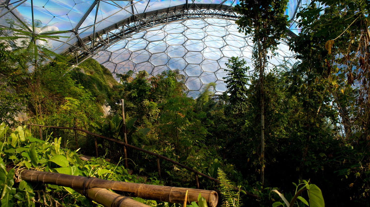 The Eden Project | © Francesco Carucci/Shutterstock