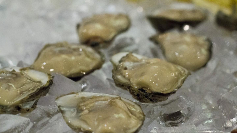 Virginia Chesapeake oysters | © Virginia Sea Grant Flickr