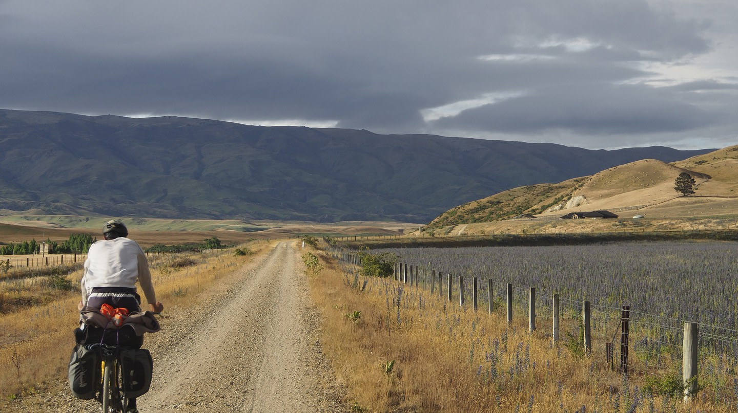 Riding the Otago Rail Trail | © Dan Dwyer/Flickr