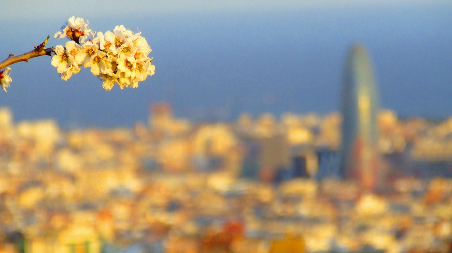 Spring unfolding in Barcelona | © robin robokow / Flickr