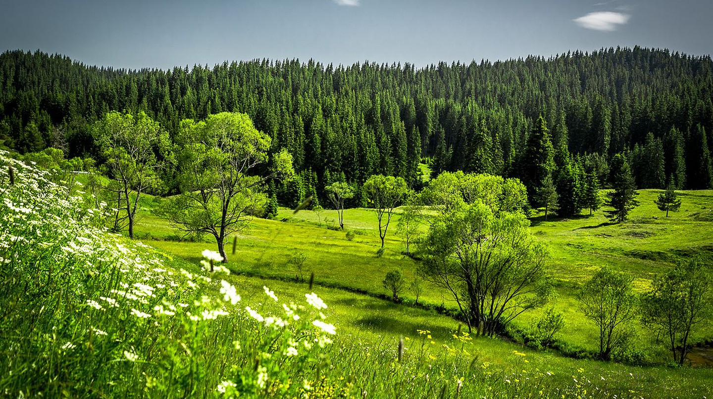 The Rhodope Mountains | © Nina Staykova/WikiCommons