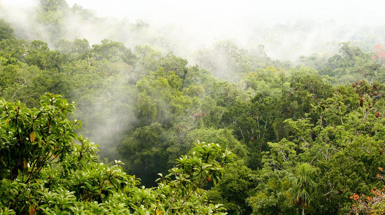 Costa Rica   © Walter Rodriguez/Flickr