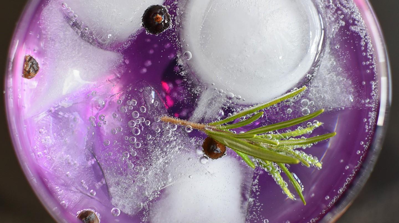 Gin and tonic © Pixabay
