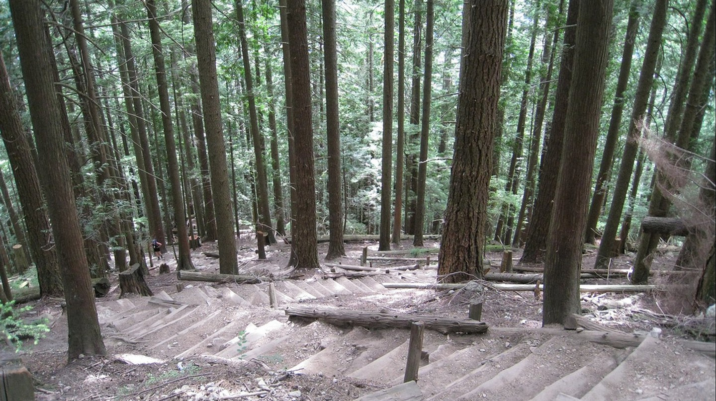 "<a href=""https://www.flickr.com/photos/cpirate/3175352413/"">Grouse Grind 