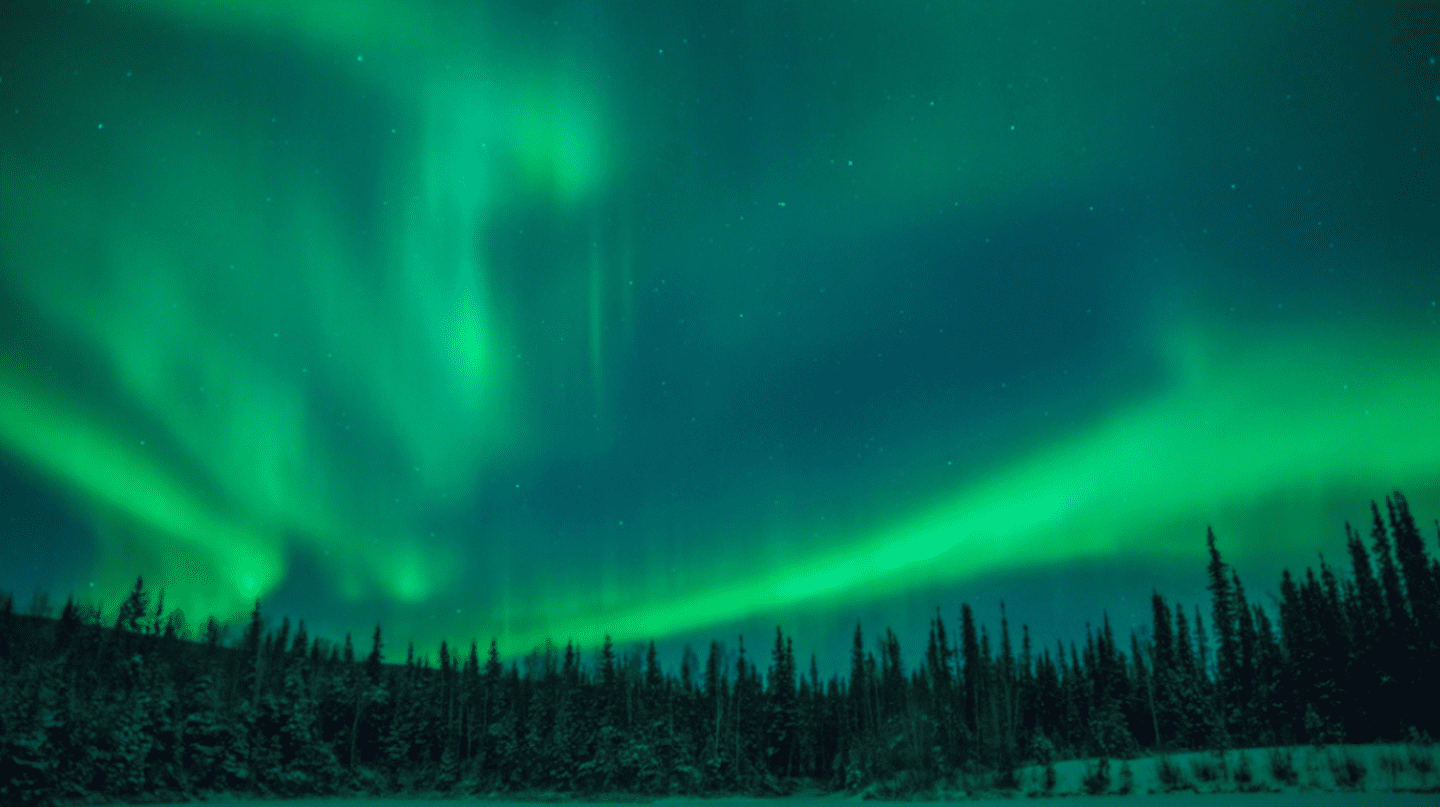 Aurora over Fairbanks, Alaska from Type Books Canada