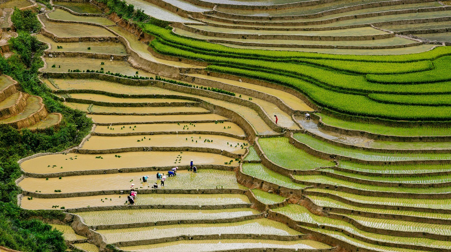 Rice terraces in Vietnam | © Nguyen Anh Tuan/Flickr