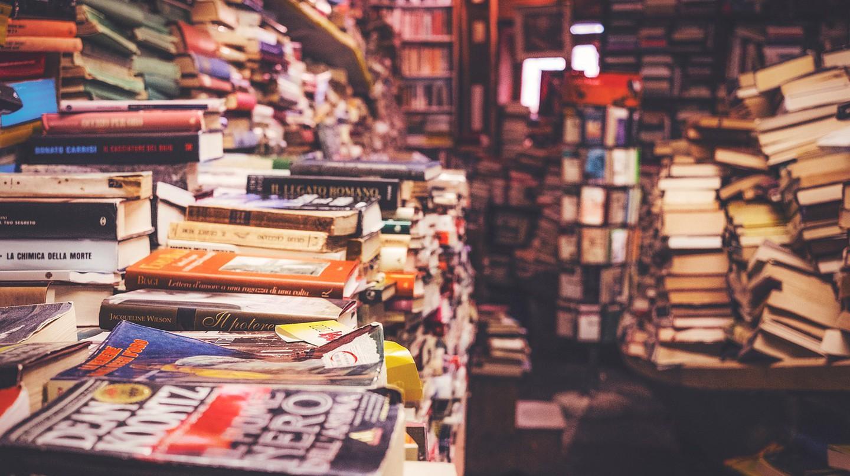 Bookshelves   © PublicCo/Pixabay