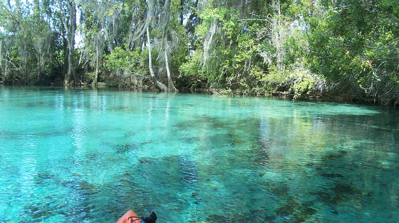 Crystal River, Florida   © Paul Clark/Flickr