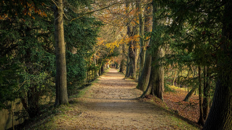 Magdalen College | © Adrian Scottow/Flickr