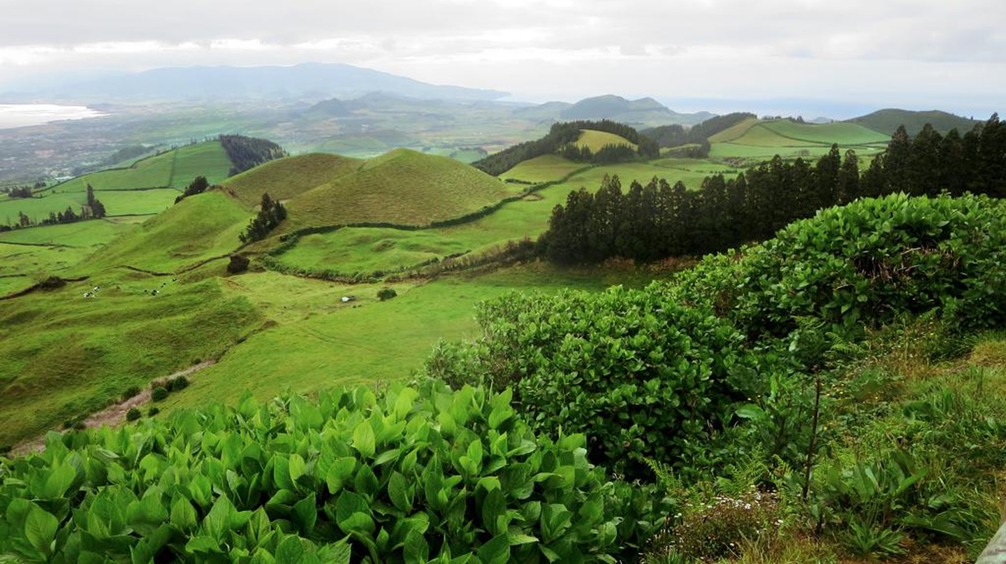 Central Sao Miguel | © David Stanley/Flickr