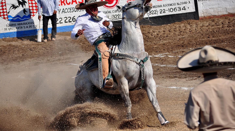 """<a href=""""https://www.flickr.com/photos/budellison/27120232586/"""" target=""""_blank"""" rel=""""noopener noreferrer"""">Charreria   © Bud Ellison / Flickr</a>"""