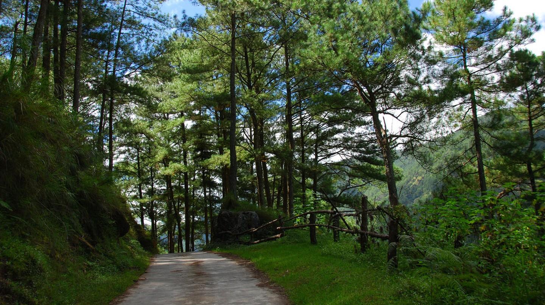 Path in Sagada   © Jojo Nicdao / Flickr