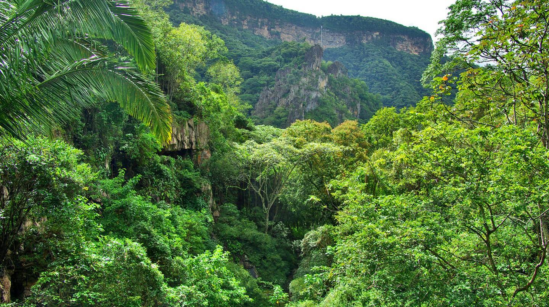 Ubajara National Park I © Otávio Nogueira/Flickr