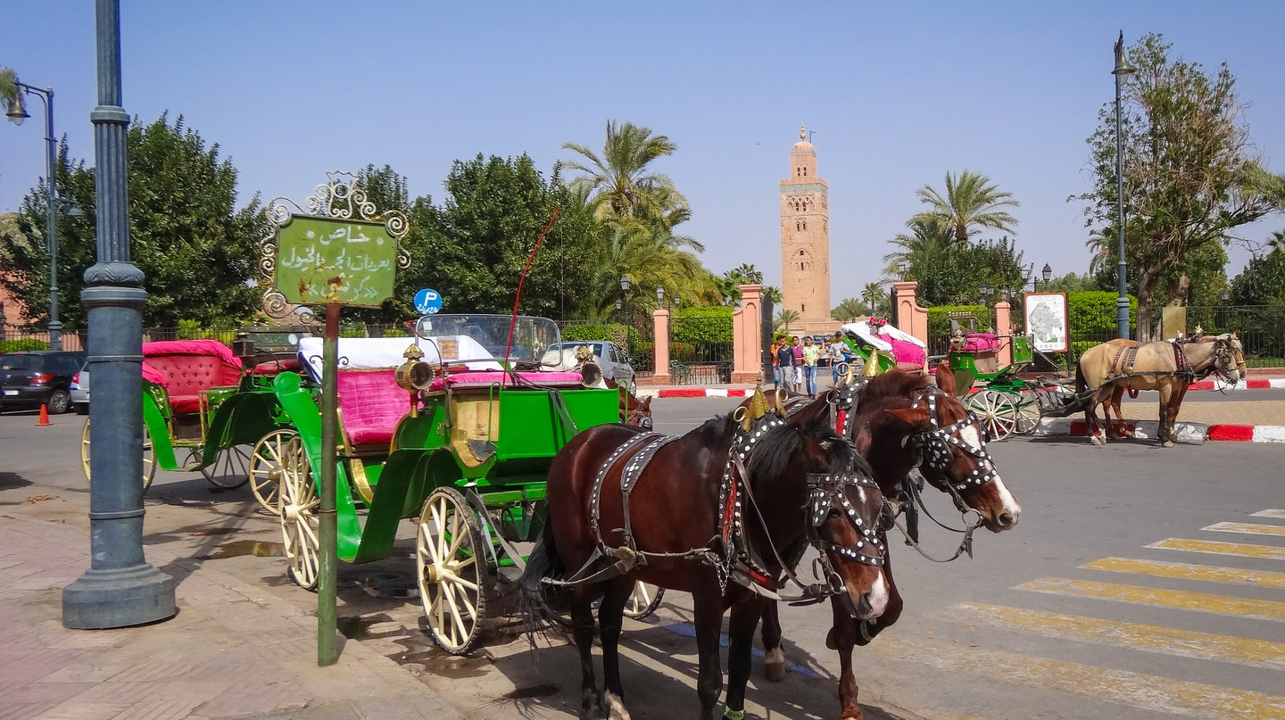 13 Facts That Will Change What You Think About Body Morocco
