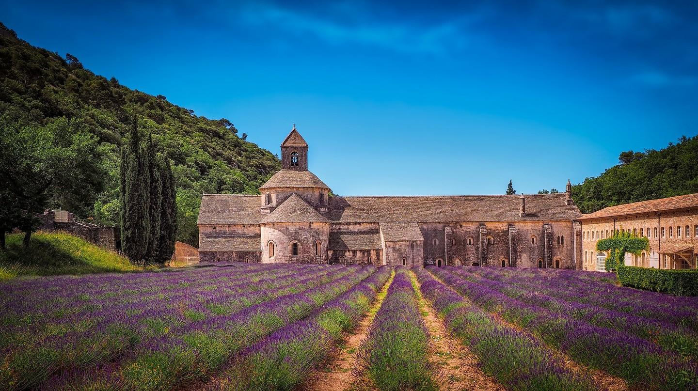 France Lavender Field | © Lubomir Mihalik / Pixabay