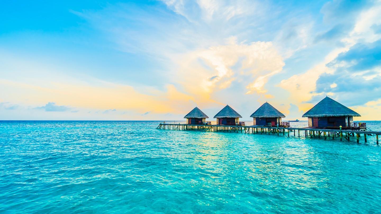 © Stockforlife/Shutterstock