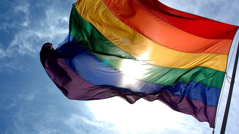 "<a href = ""https://www.flickr.com/photos/23912576@N05/2942525739""> Rainbow Flag   © Ludovic Bertron/Flickr"