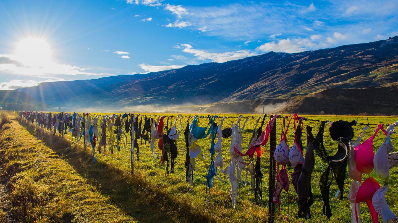 Cardrona Bra Fence, New Zealand | © Daniel Fernandes de Oliveira/Flickr