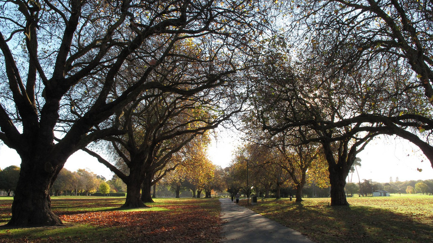 Hagley Park, Christchurch | © profernity/Flickr