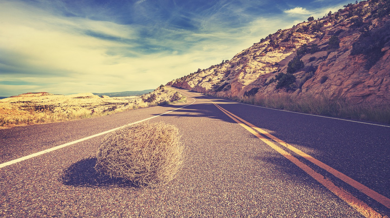 A tumbleweed rolls across the street | © Maciej Bledowski/Shutterstock