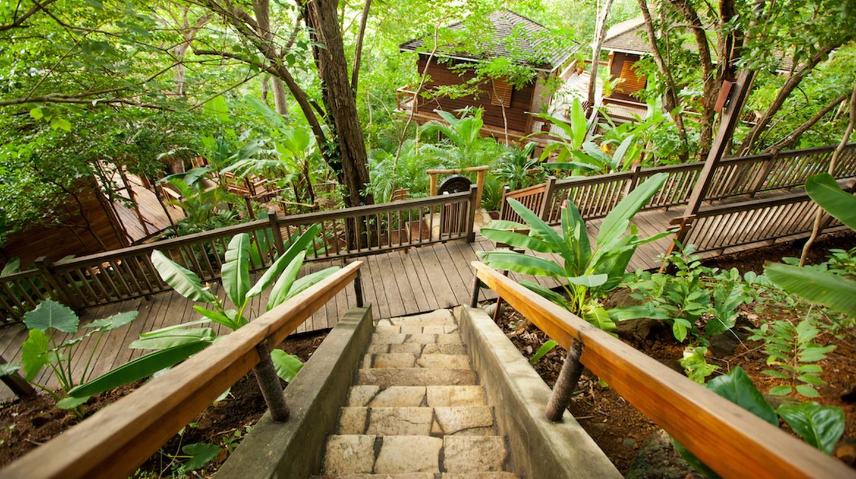 Tree house vacation | © Courtesy of Aqua Wellness Resort
