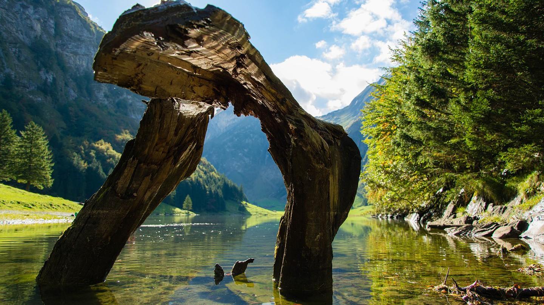 Discover Switzerland's natural wonders   © goromir / Pixabay