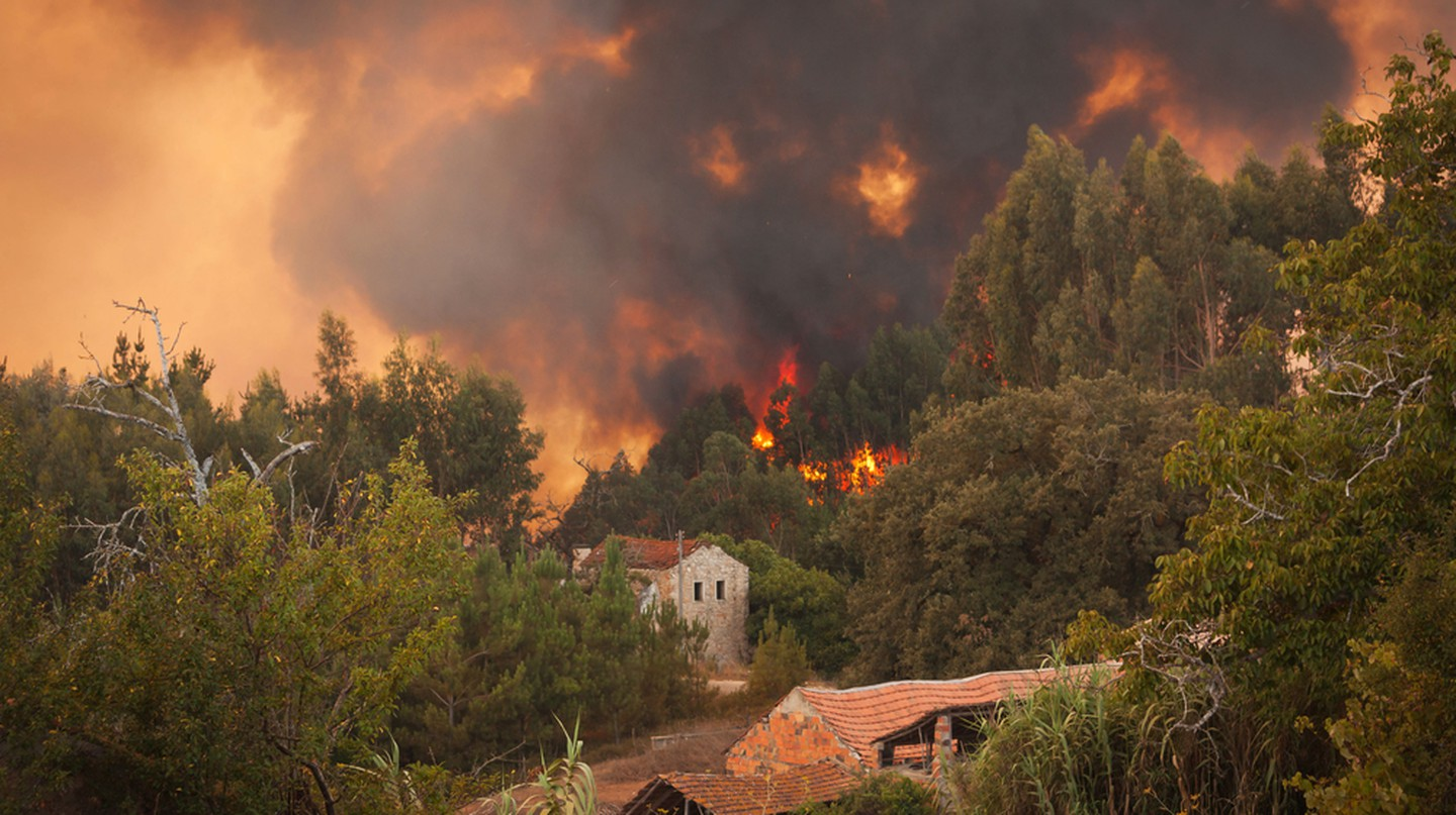 Fires in Portugal | © Paulo M. F. Pires / Shutterstock